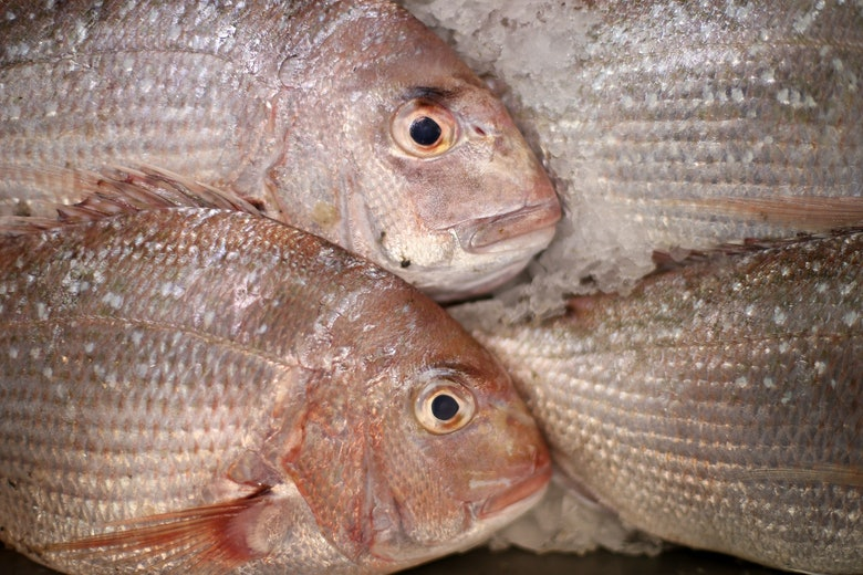 Fish poisoning is more common these days so watch out for for Diarrhea after eating fish