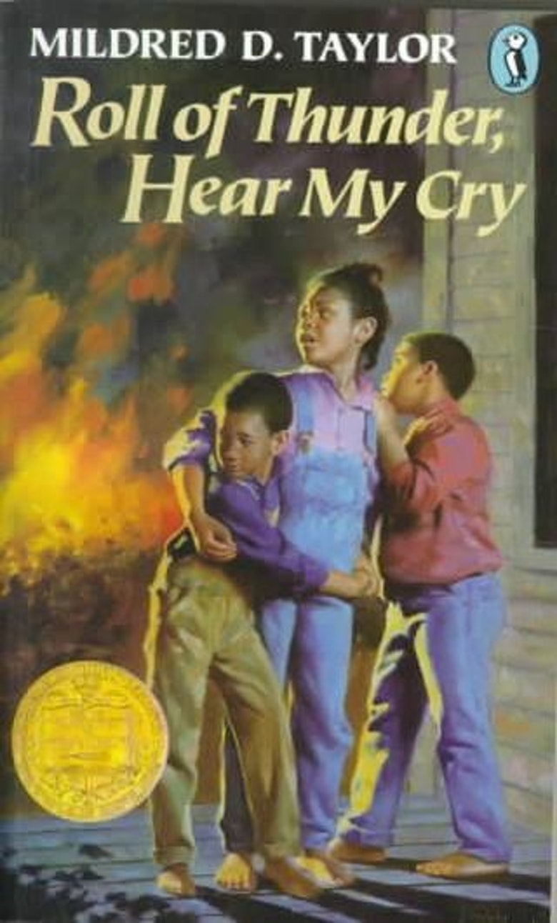 rothmc angry incidents A discussion of the roll of thunder, hear my cry themes running throughout roll of thunder, hear my cry great supplemental information for school essays and projects.