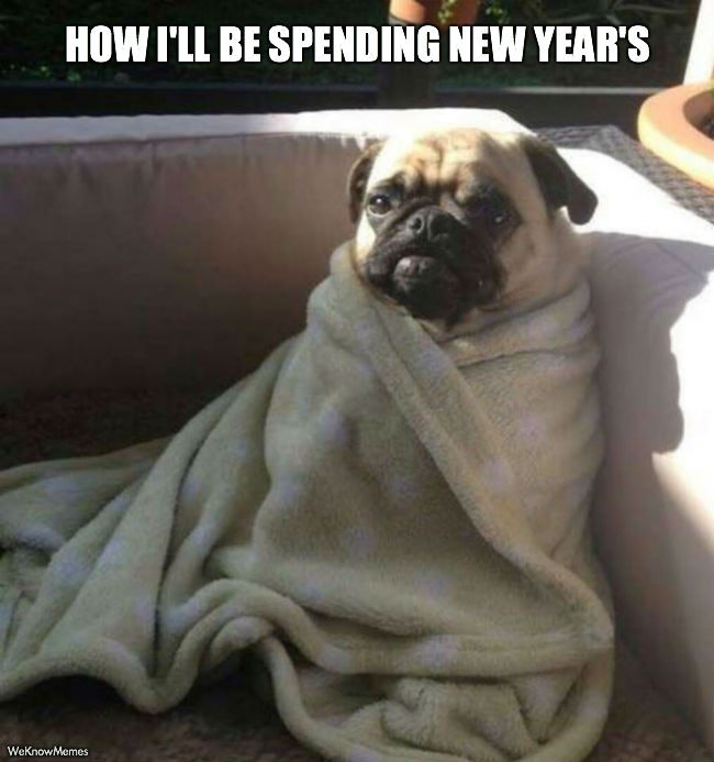 Funny Meme For New Year : Funny new year s eve memes to keep you laughing into