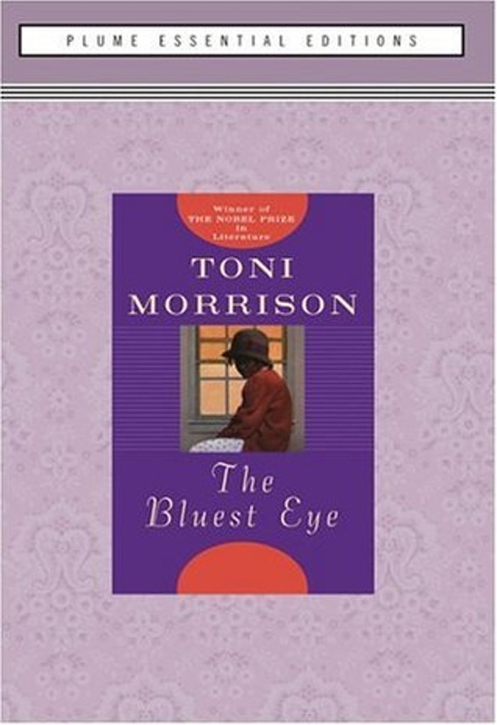 the different depiction of beauty in the bluest eye a novel by toni morrison R eaders of toni morrison's first novel, the bluest eye, are  used to be able to  do with each other in private and in that civi-  woman's patina of beauty   figure in (or on the fringes of) many communities like the one morrison depicts in.
