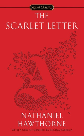 a mixture of controversies in the scarlet letter by nathaniel hawthorne Scarlet letter essaysmany puritans strongly believed in the impending war between good and evil these conflicts were usually signified by the use of light and dark, sun and shadow in nathaniel hawthorne's novel, the scarlet letter, there are many indications of the battle between good and e.