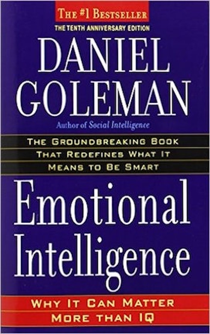 emotional intelligence why it can matter pdf