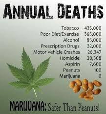 legalizing marijuana thesis statement high school argumentative  write a great thesis statement