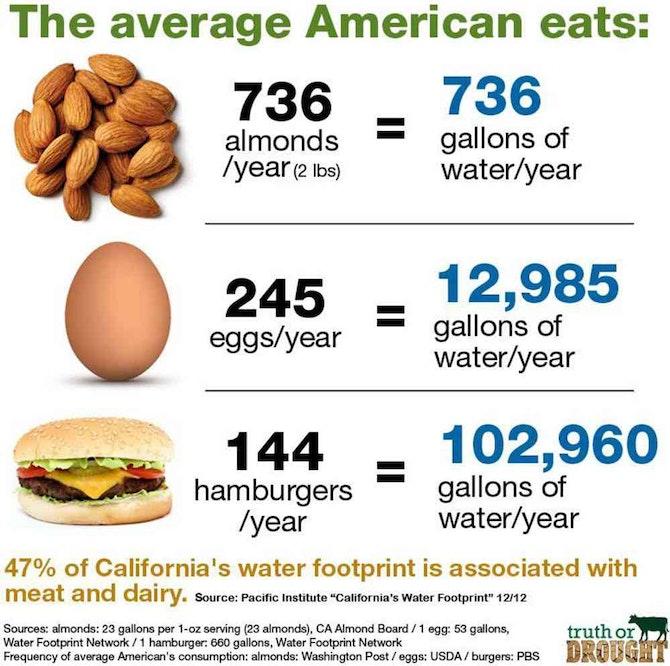 Image Result For Image Result For Vegan Group