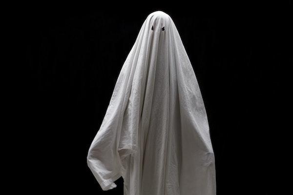 Paranormal dating society