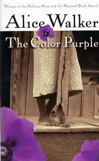 analytical essay on the color purple