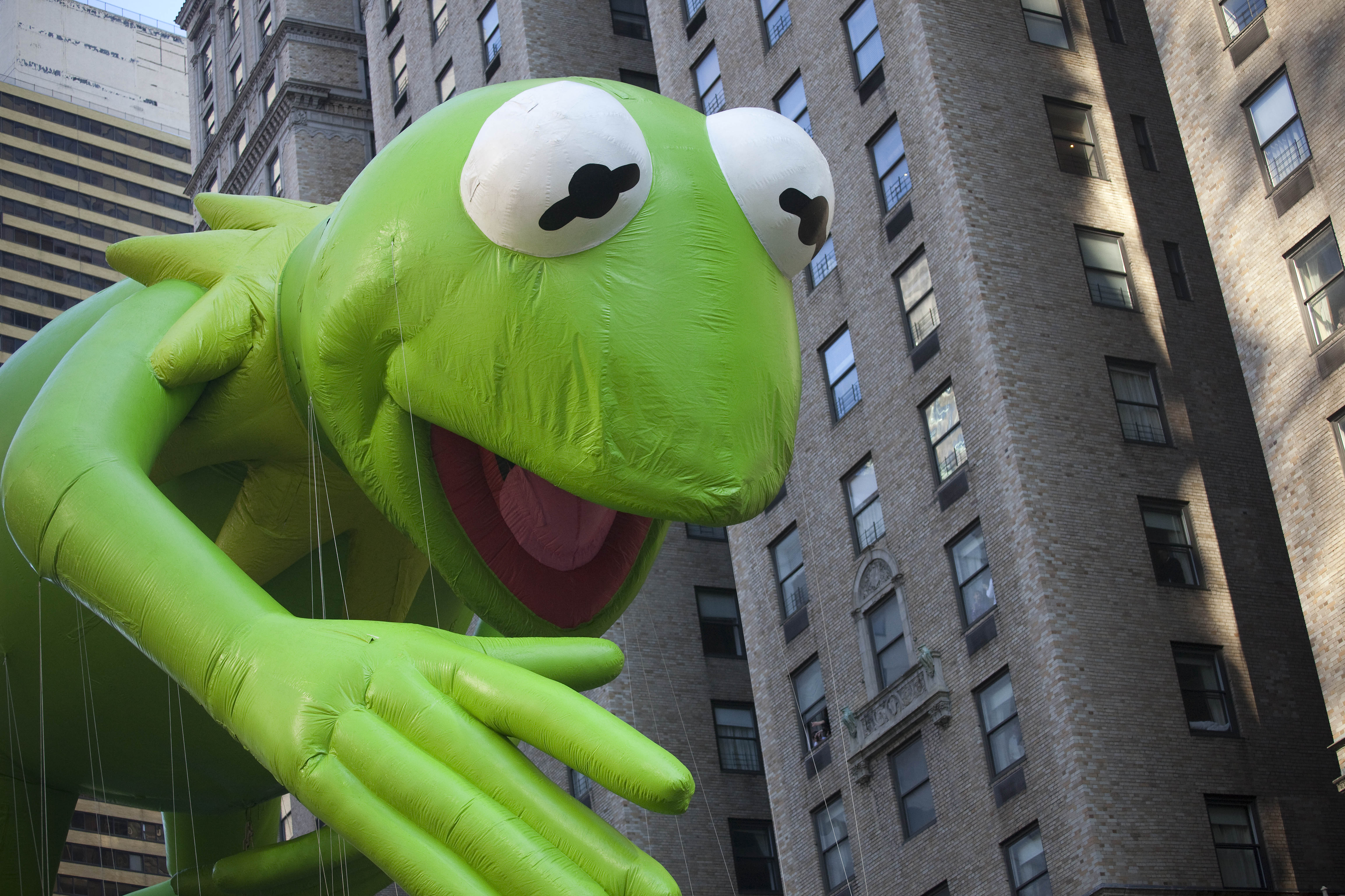 Kermit The Frog Butthatsnoneofmybusinesstho Memes Are Annoyingly