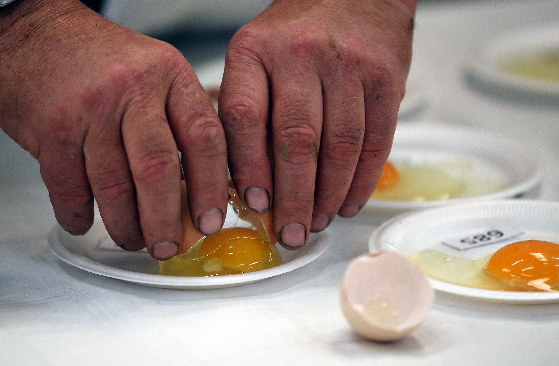 Foods To Eat After Food Poisoning Yogurt