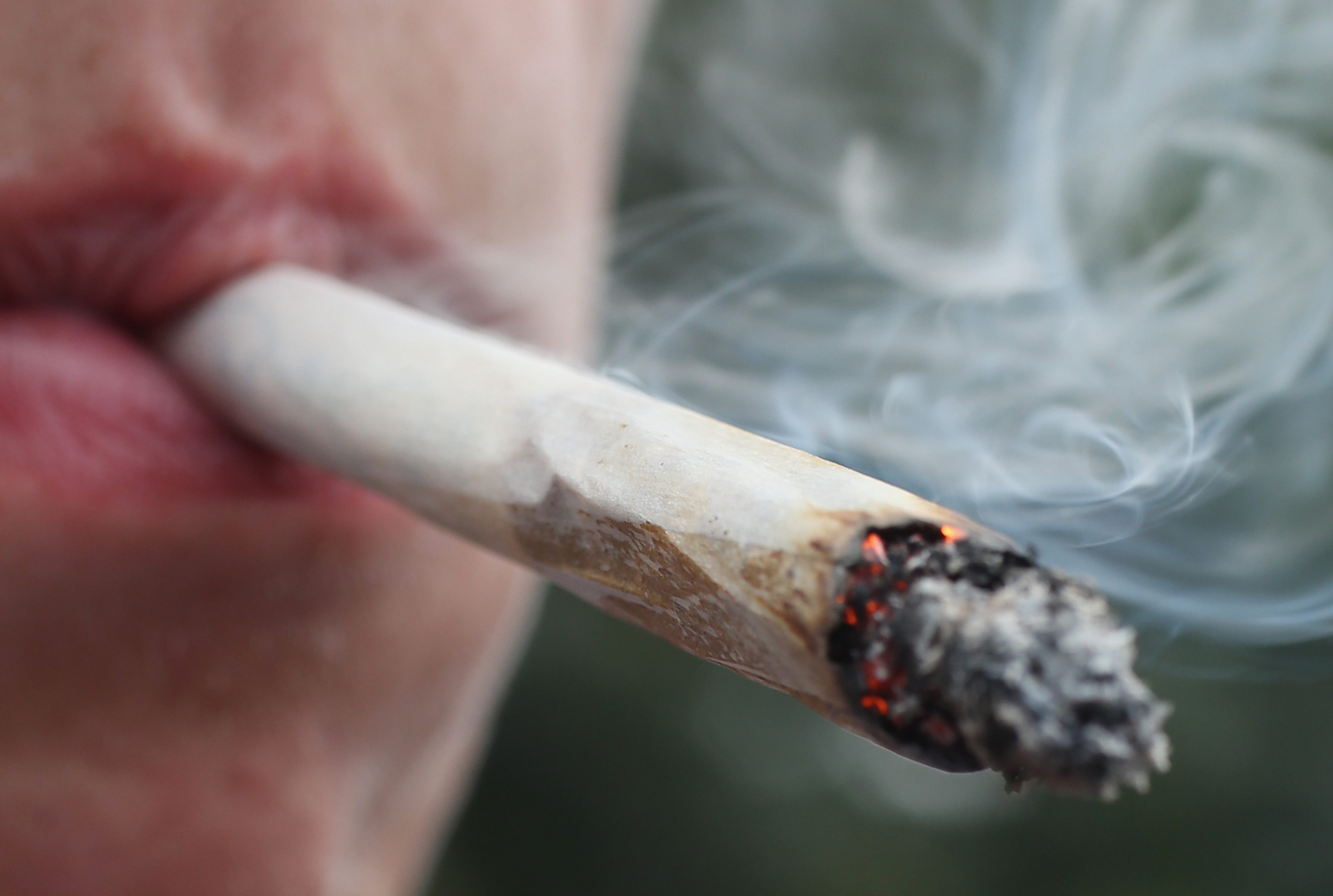 smoking weed writing essay The effects of marijuana marijuana is a mood altering or psychoactive drug that has many nicknames, such as pot, weed, ganja, sensi, herb, and.
