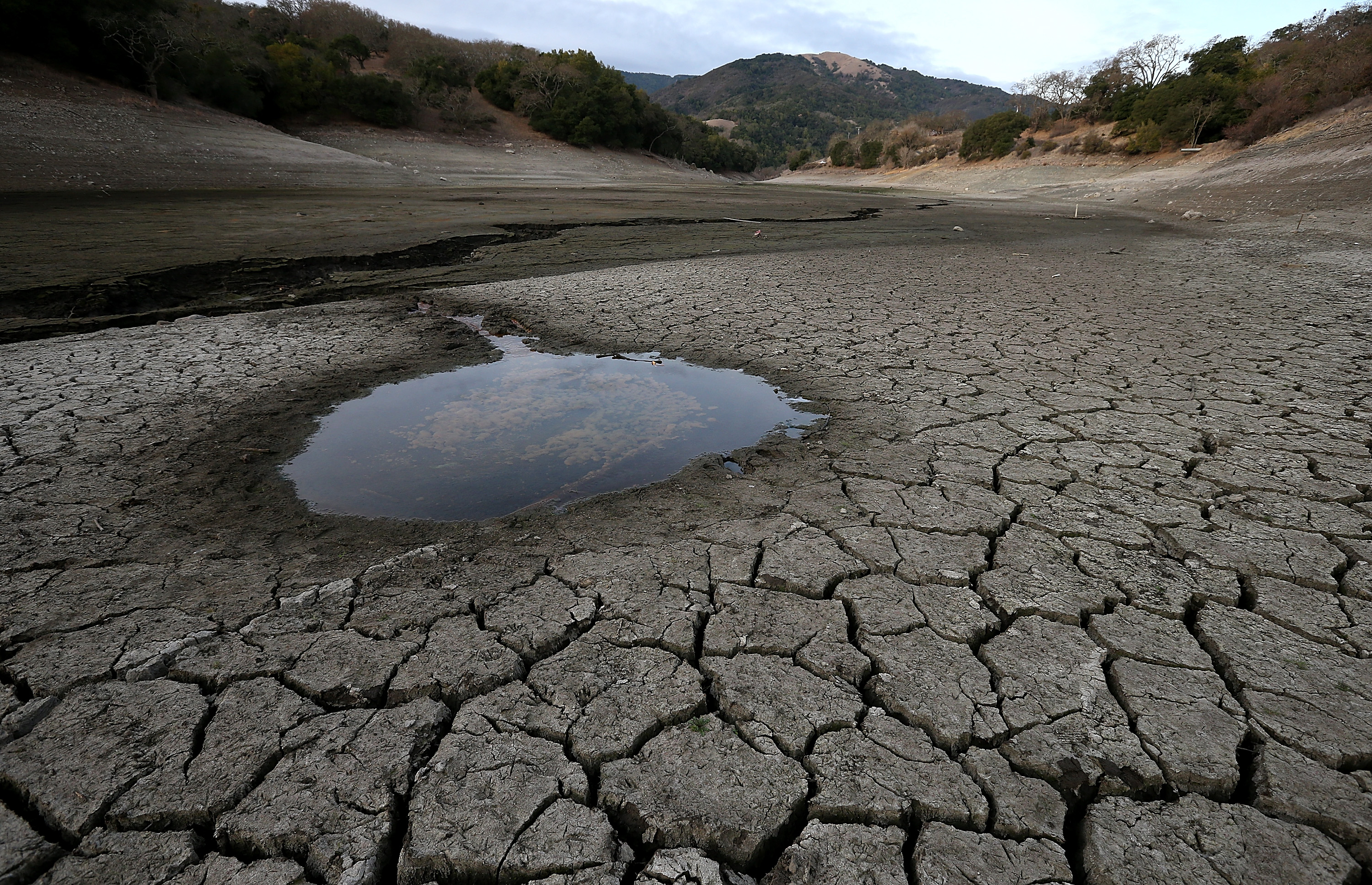 california water drought California gov jerry brown imposes mandatory water restrictions on residents, businesses and farms the state is caught in an historic drought.