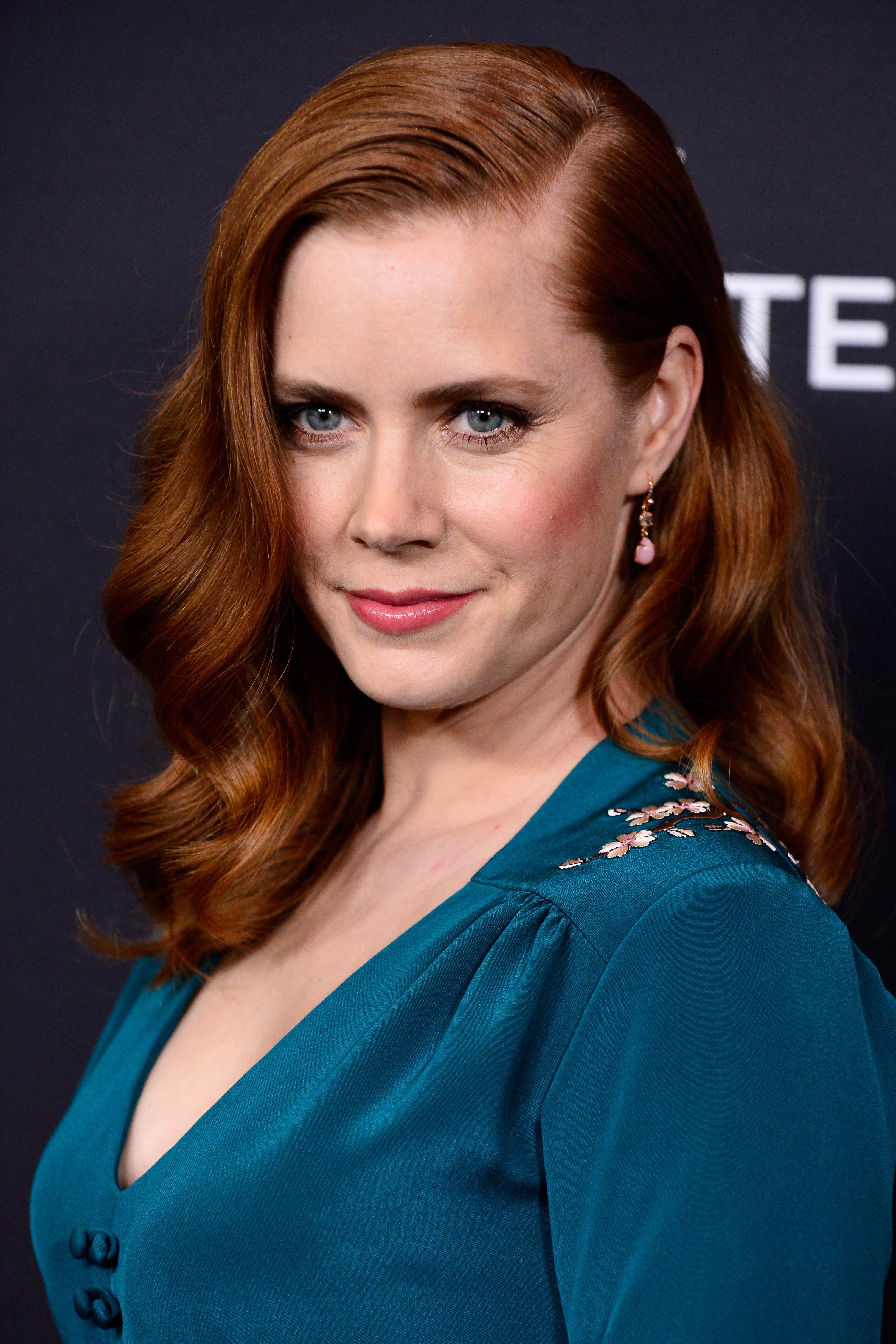 Hacked Amy Adams naked (21 photos), Topless, Fappening, Instagram, lingerie 2017