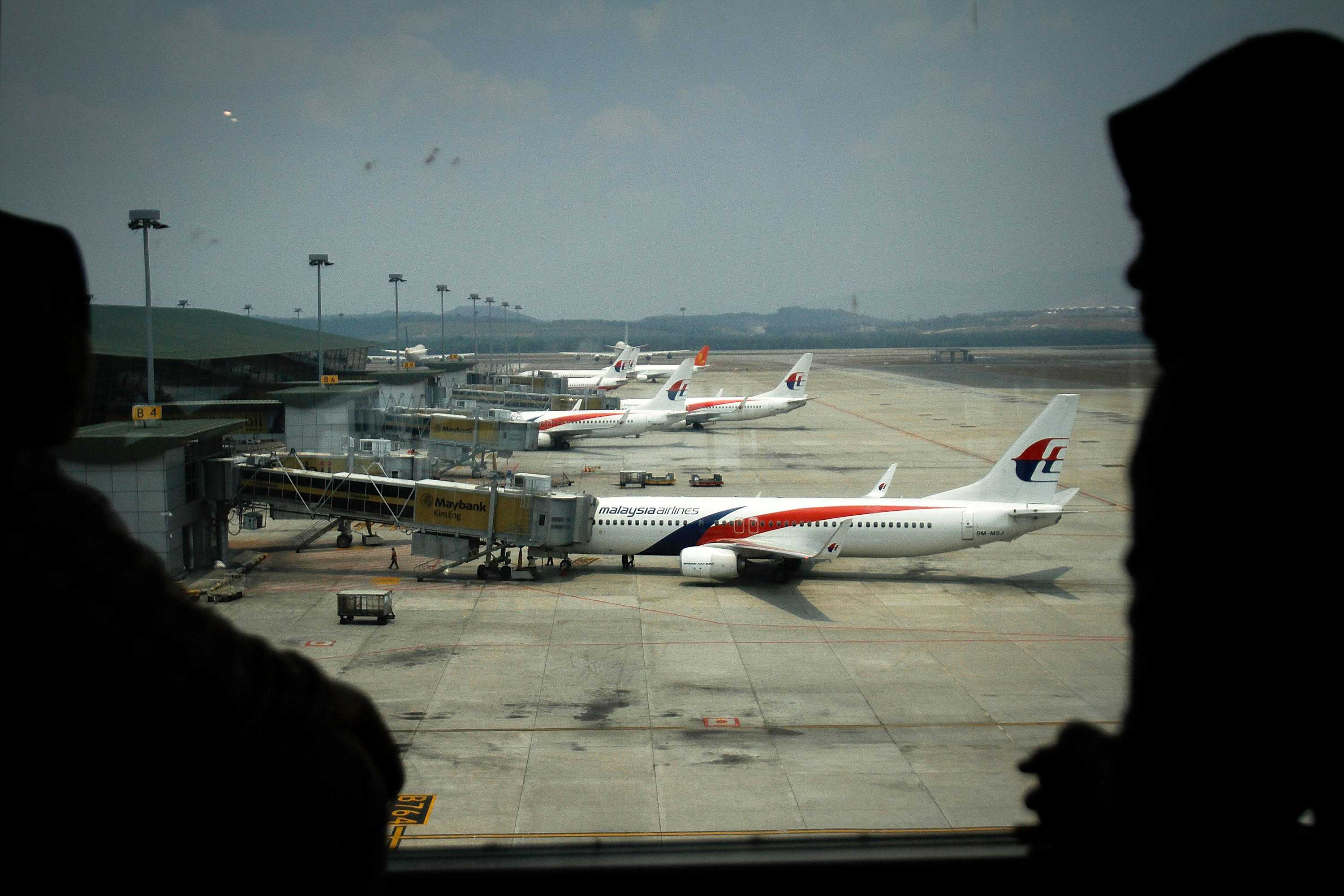 Malaysia Airlines Flight 370's Disappearance Likely Caused