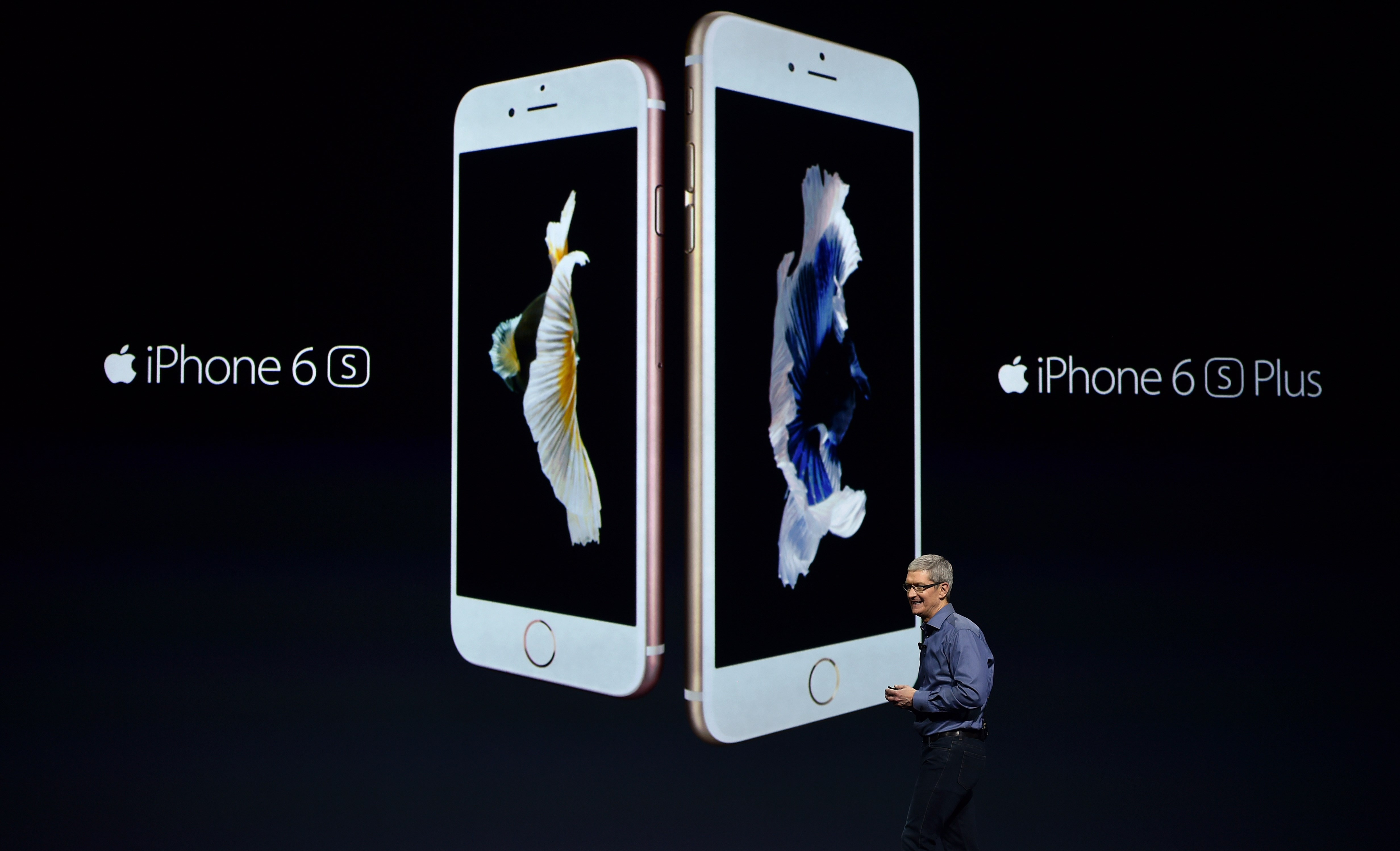 brand new 30d77 f03bc Does The iPhone 6 Work With An iPhone 6S Charger? Apple Introduced A ...