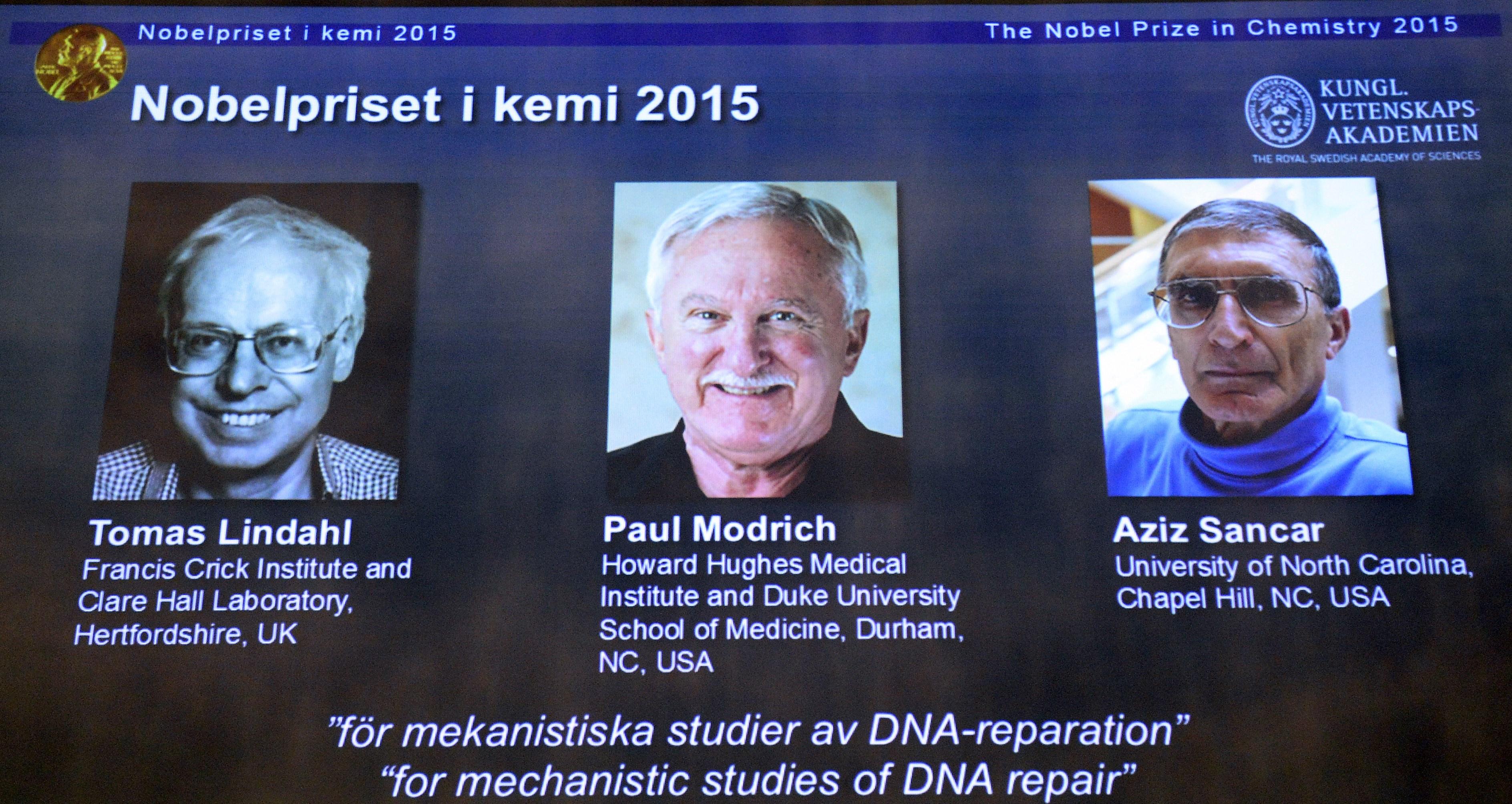 nobel prizes in chemistry essay