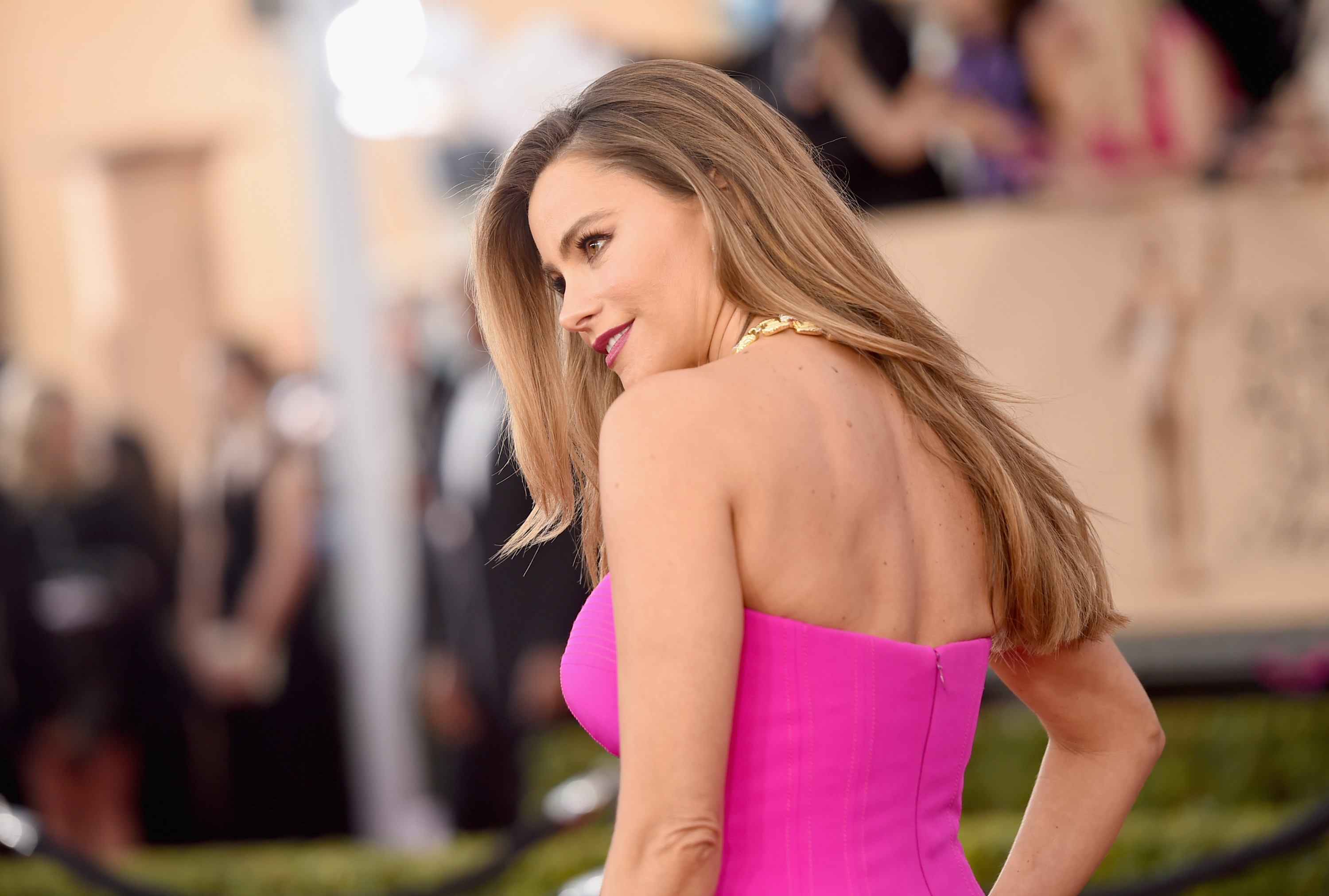 Why Is Sofia Vergara At The Oscars The Actress Is A 2016 Awards