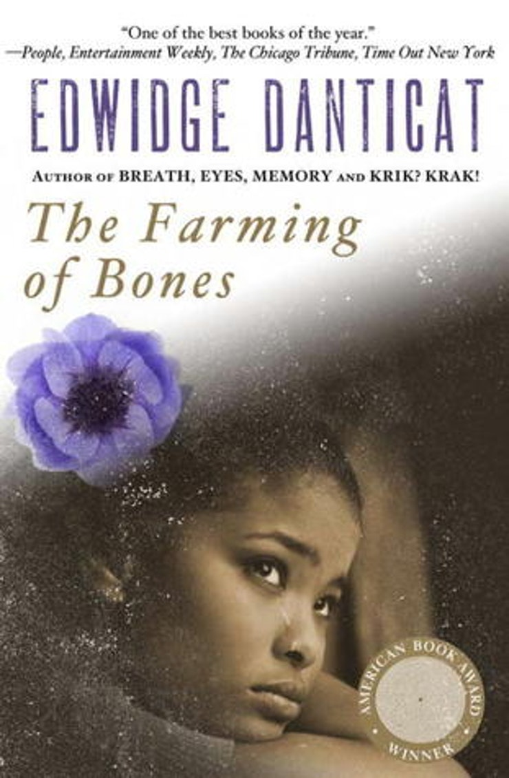 15 books that crush your heart into tiny pieces a beautiful love destroyed by genocide and hate in the farming of the bones you see what becomes of love when living in terror how it can be what drives
