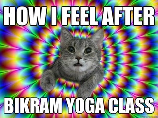 9 international yoga day memes that sum up yoga class