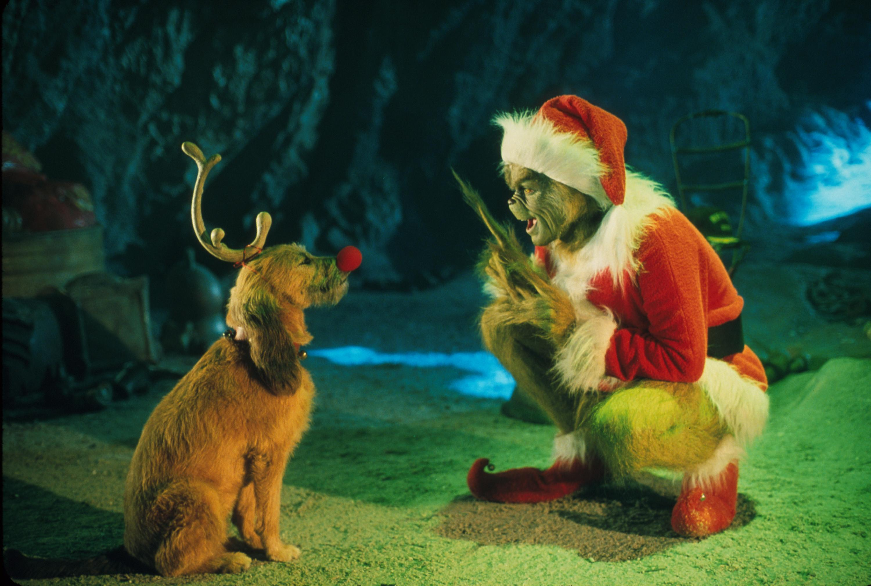 Uncategorized The Grinch And His Dog 6 reasons why the real star of how grinch stole christmas is max dog