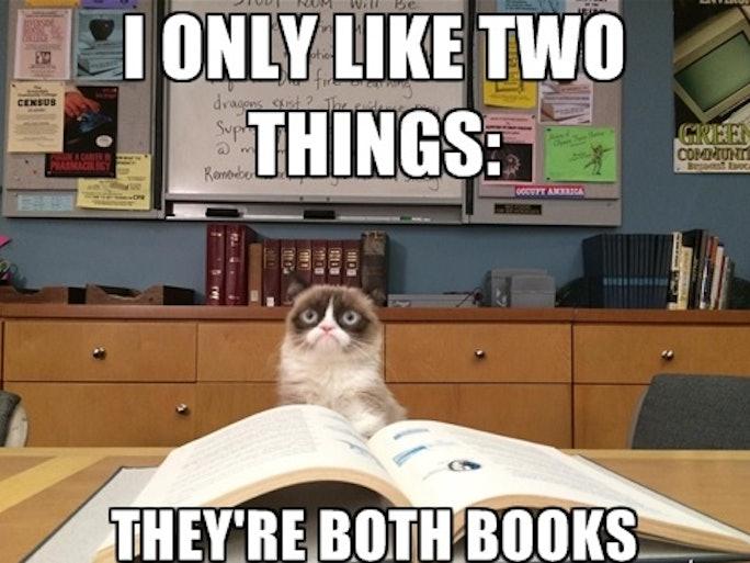 memes meme books lovers cat understand reading grumpy things sadie bustle say format trombetta don