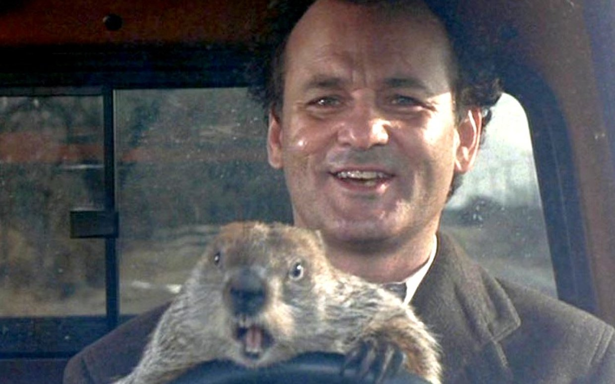 Image result for ground hog day movie