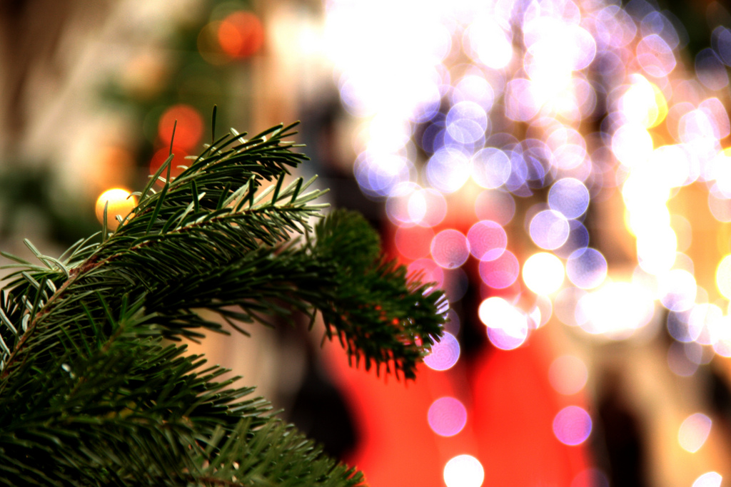 Jews Christmas Trees.16 Things Jewish People Are Really Tired Of Hearing Every
