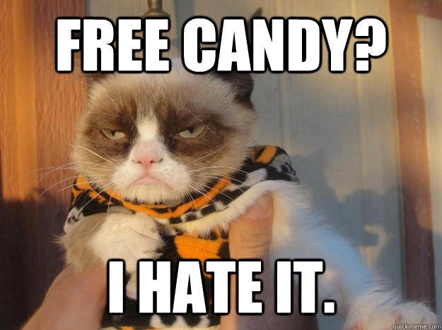 Grumpy Cat Grumpy Cat What Are They Feeding You