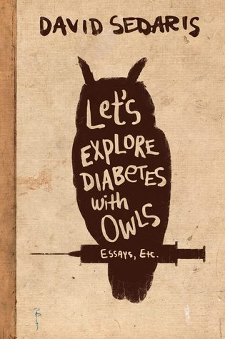 essay collections to even if you think you hate essays a modern master of essay writing david sedaris is at his finest and funniest in his 2013 collection let s explore diabetes owls his essays