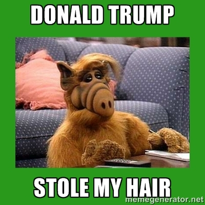 Image result for animal memes of trump
