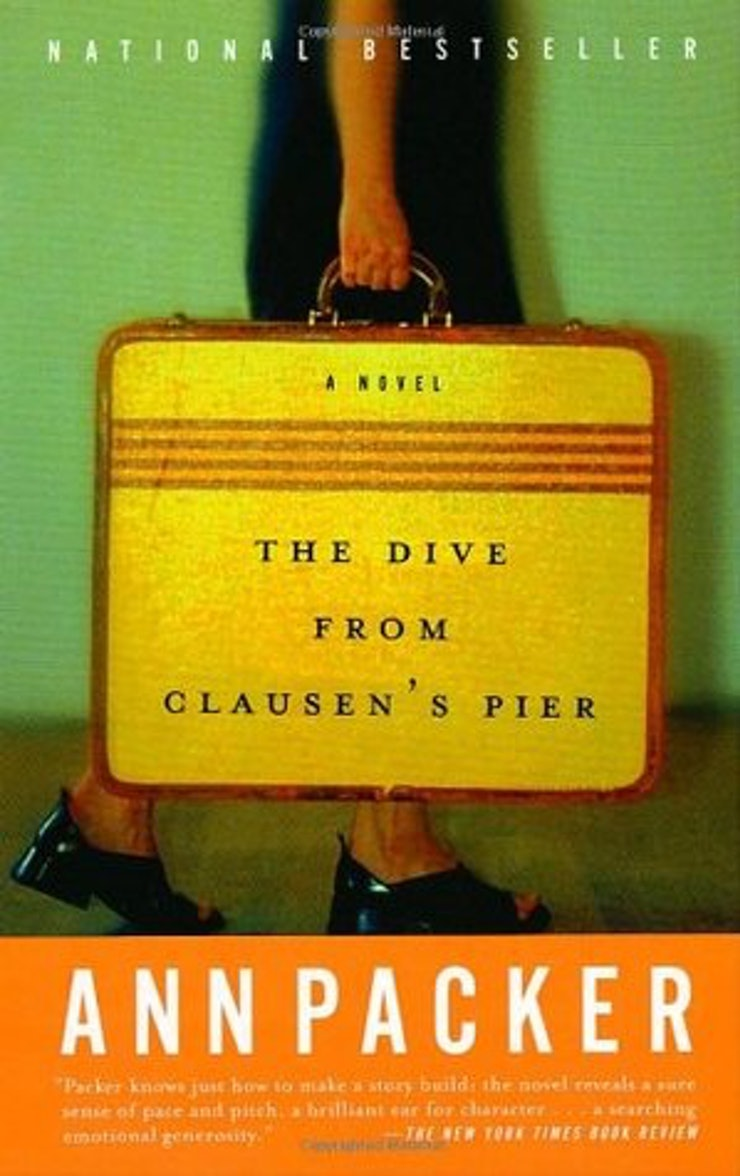 books to if you love a shocking plot twist though not written the pace of say a shock filled thriller the dive from clausen s pier is still rife unexpected twists and a quiet storm of
